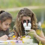 Progettazione percorsi didattici ed educazione ambientale